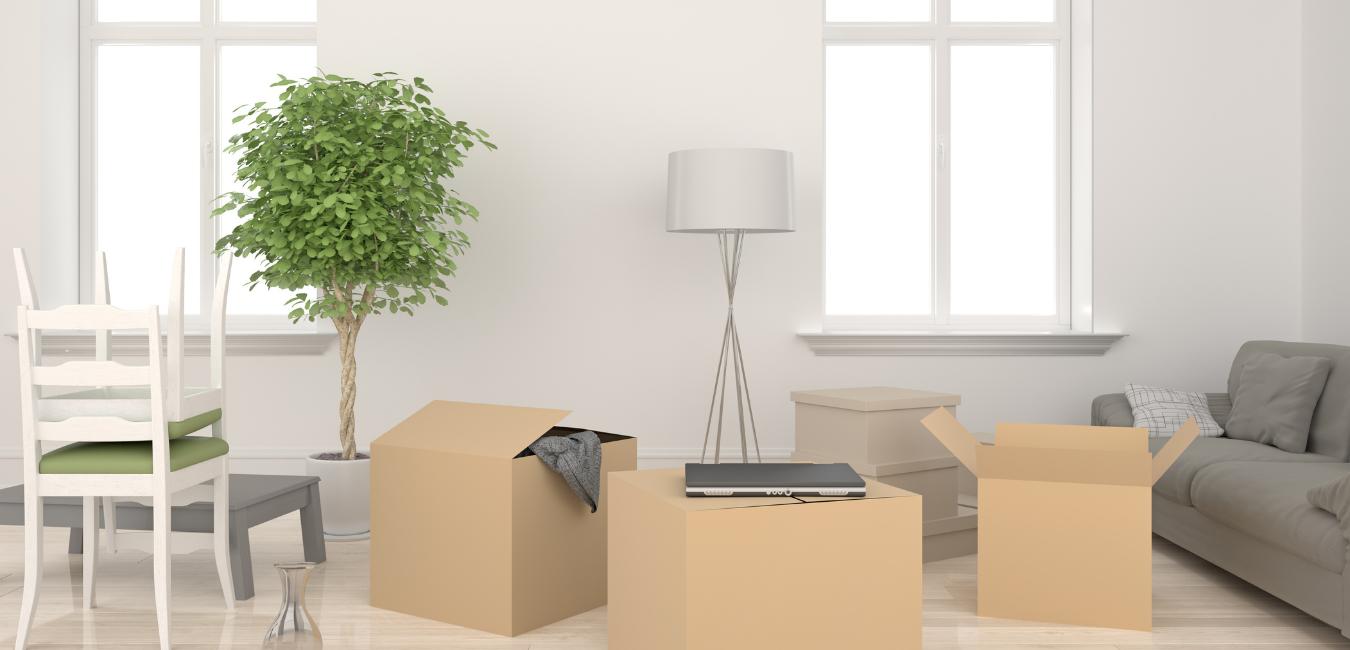 Tenants home insurance